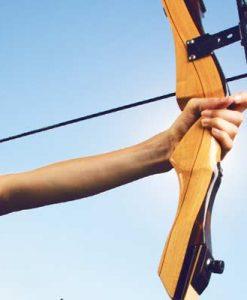 Archery Bow & Arrows